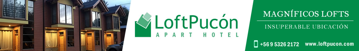 Loft Pucón